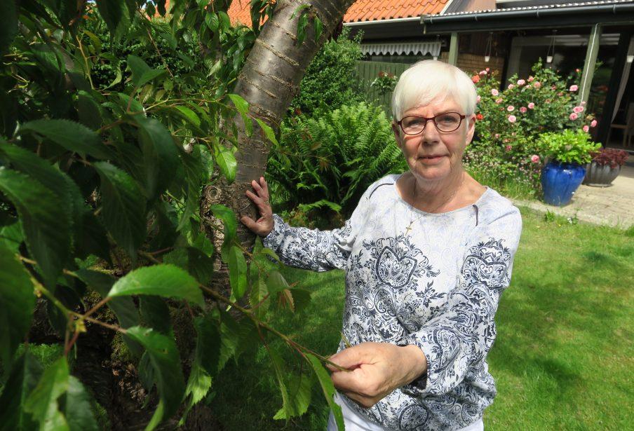 Edel, 77, arbejder som frivillig i Røde Kors Hørsholm